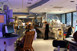 Neonatal Intensive Care Unit at Shands Hospital for Children at UF